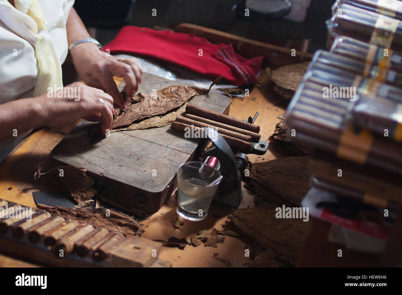 An elderly woman works on traditional manufacture of cigars at the cuban tobacco factory, Cuba Stock Photo