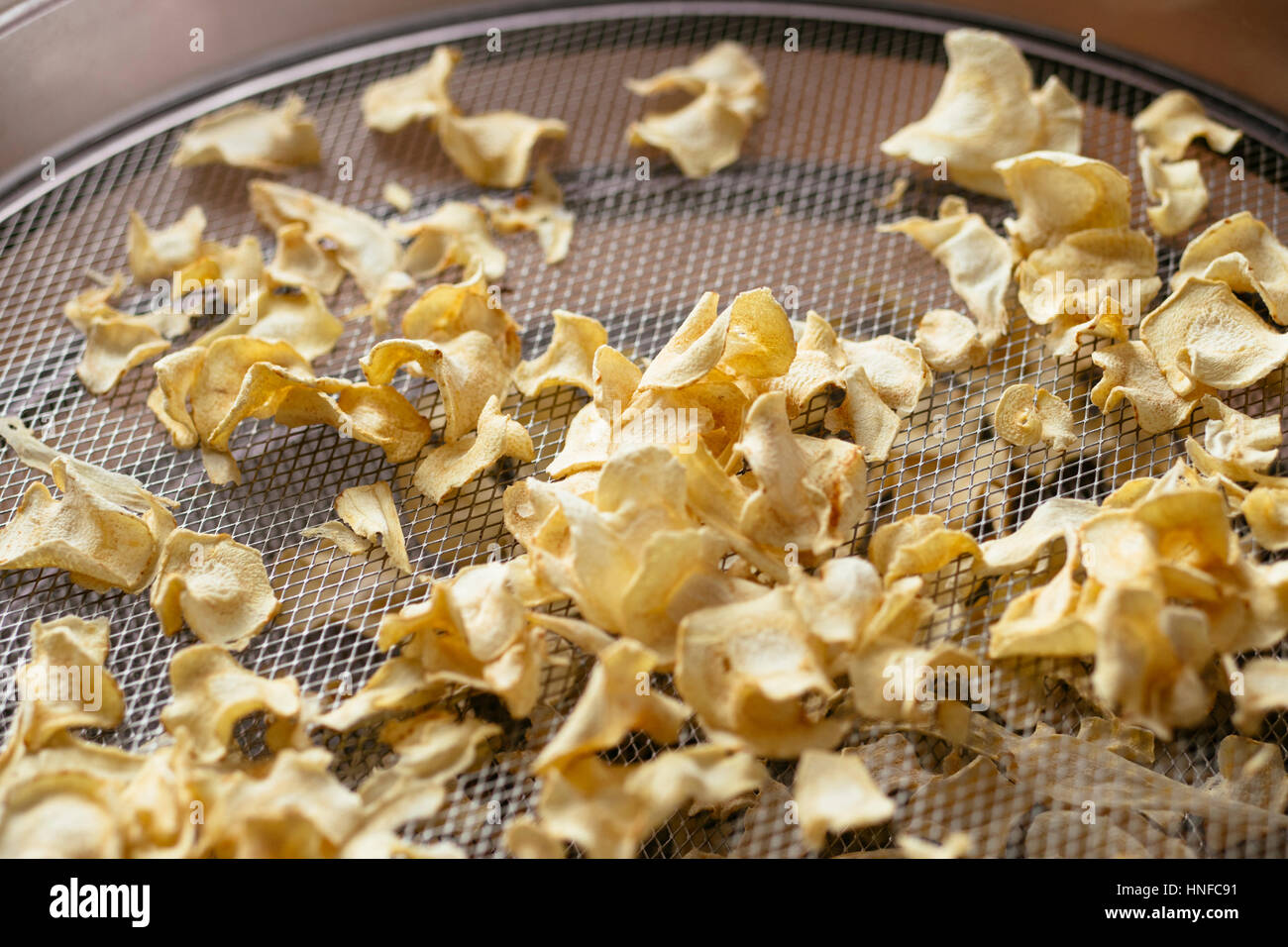 Parsnip chips on the rack of a dehydrator Stock Photo