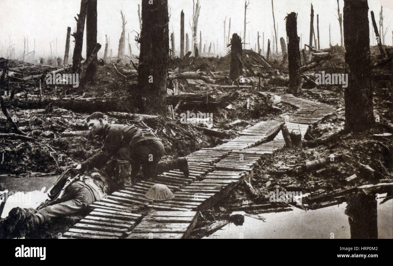 passchendaele essay People aged 16 and under were invited to submit short essays about relatives who fought at the battle of passchendaele during world war i.