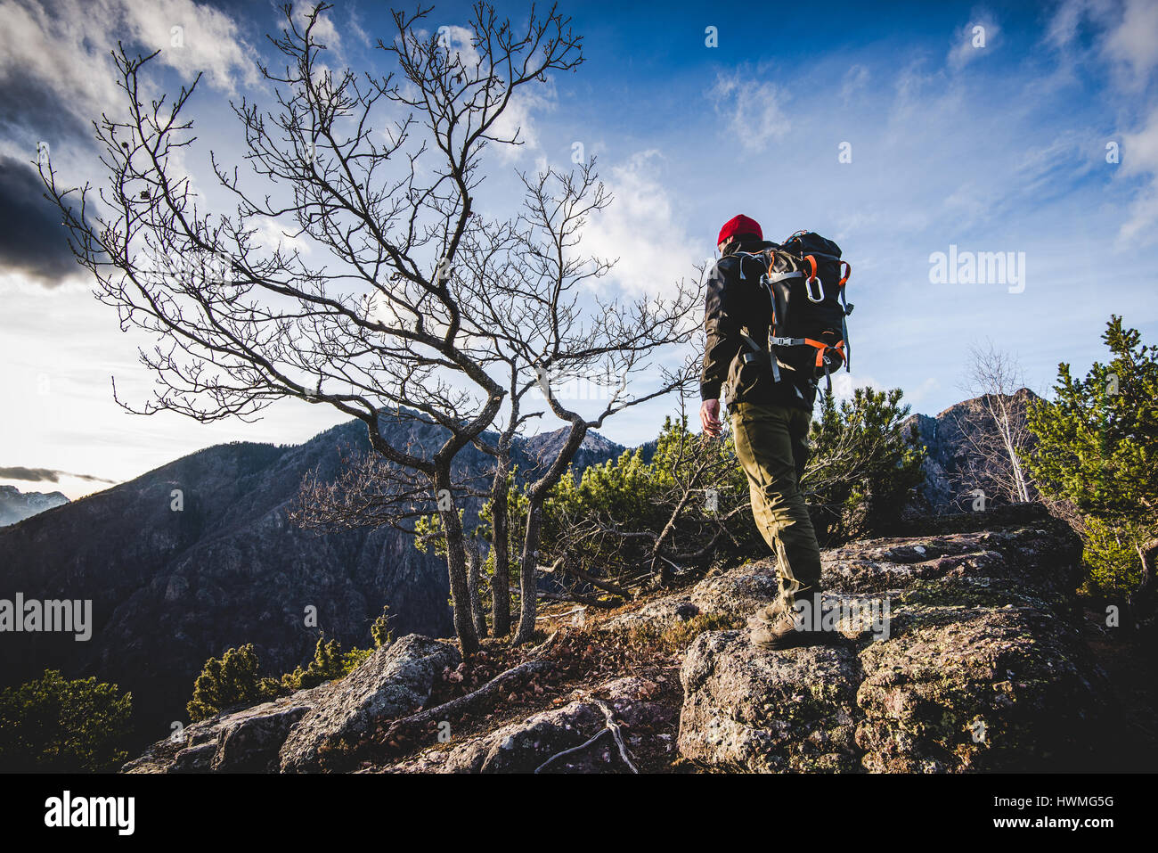 hiker walking on a mountain trail in the woods - wanderlust travel concept with sporty people at excursion in wild Stock Foto