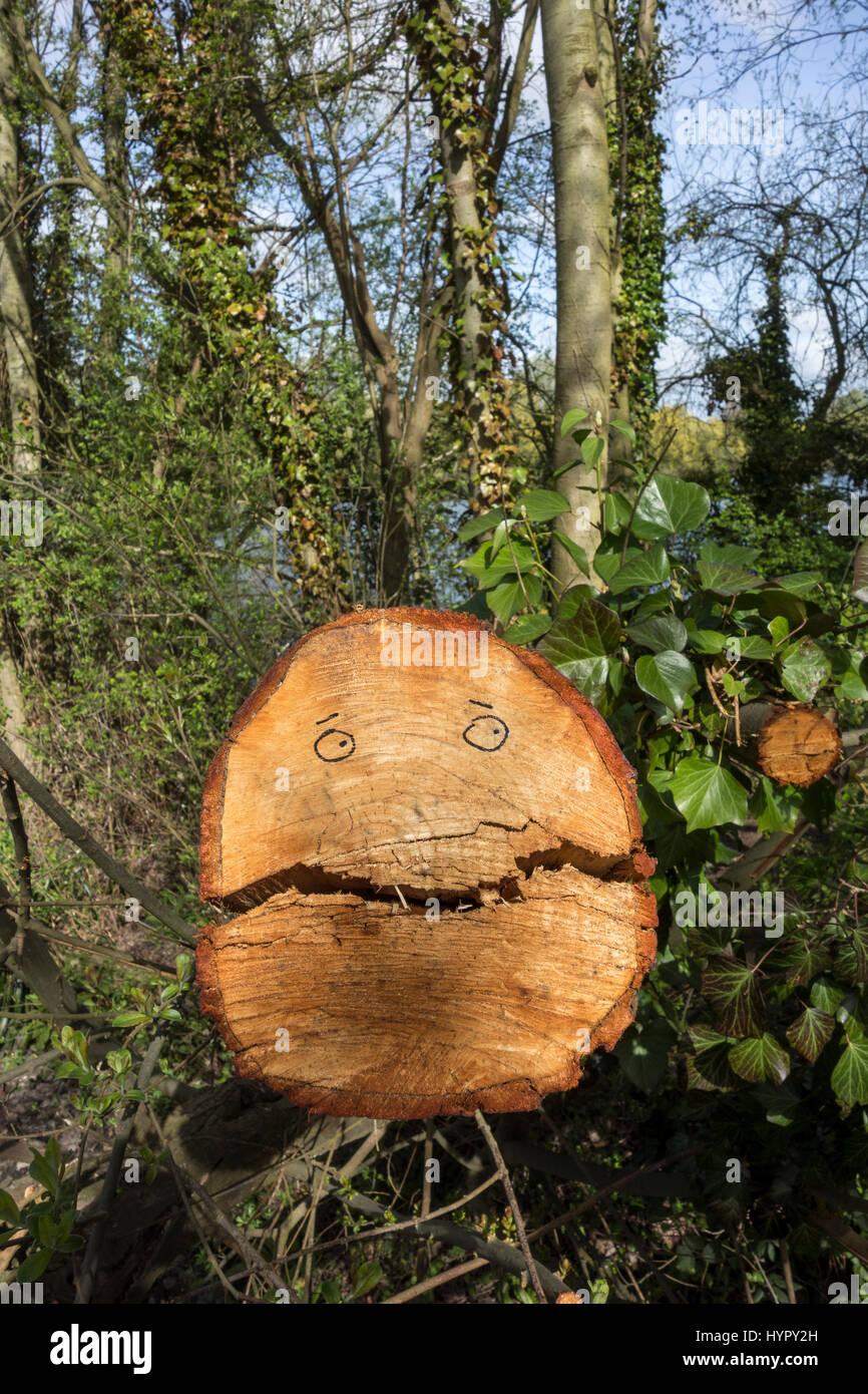 eyes-drawn-on-fresh-cut-tree-trunk-to-lo