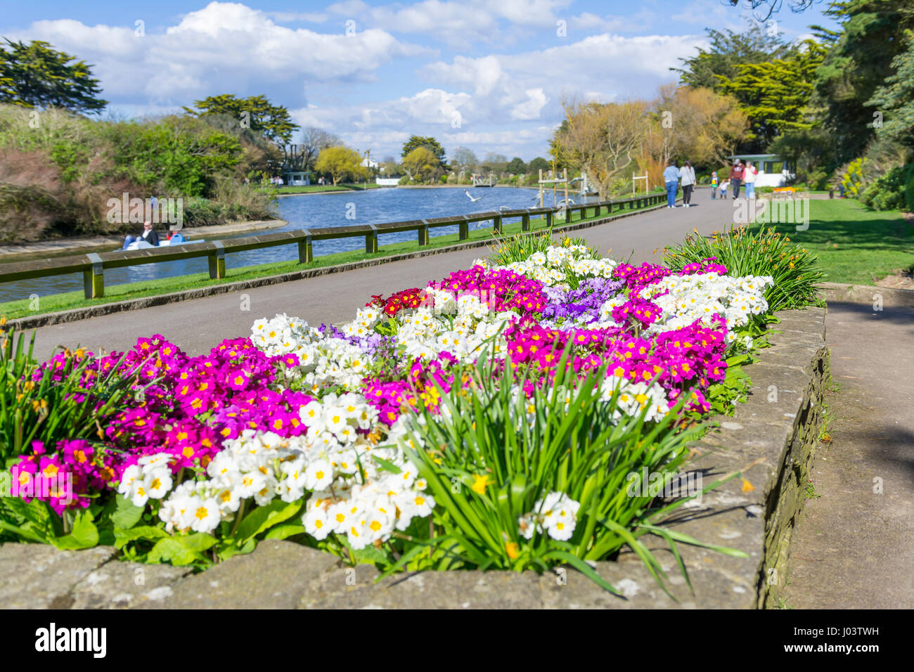 spring-flower-bed-by-a-lake-in-mewsbrook