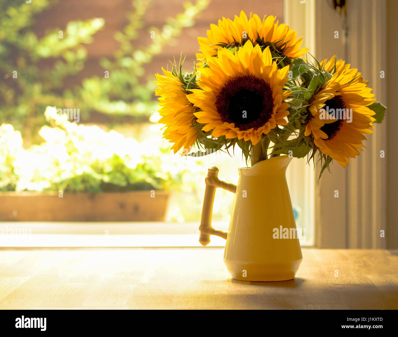 sunflowers-in-a-china-vase-on-a-rustic-k