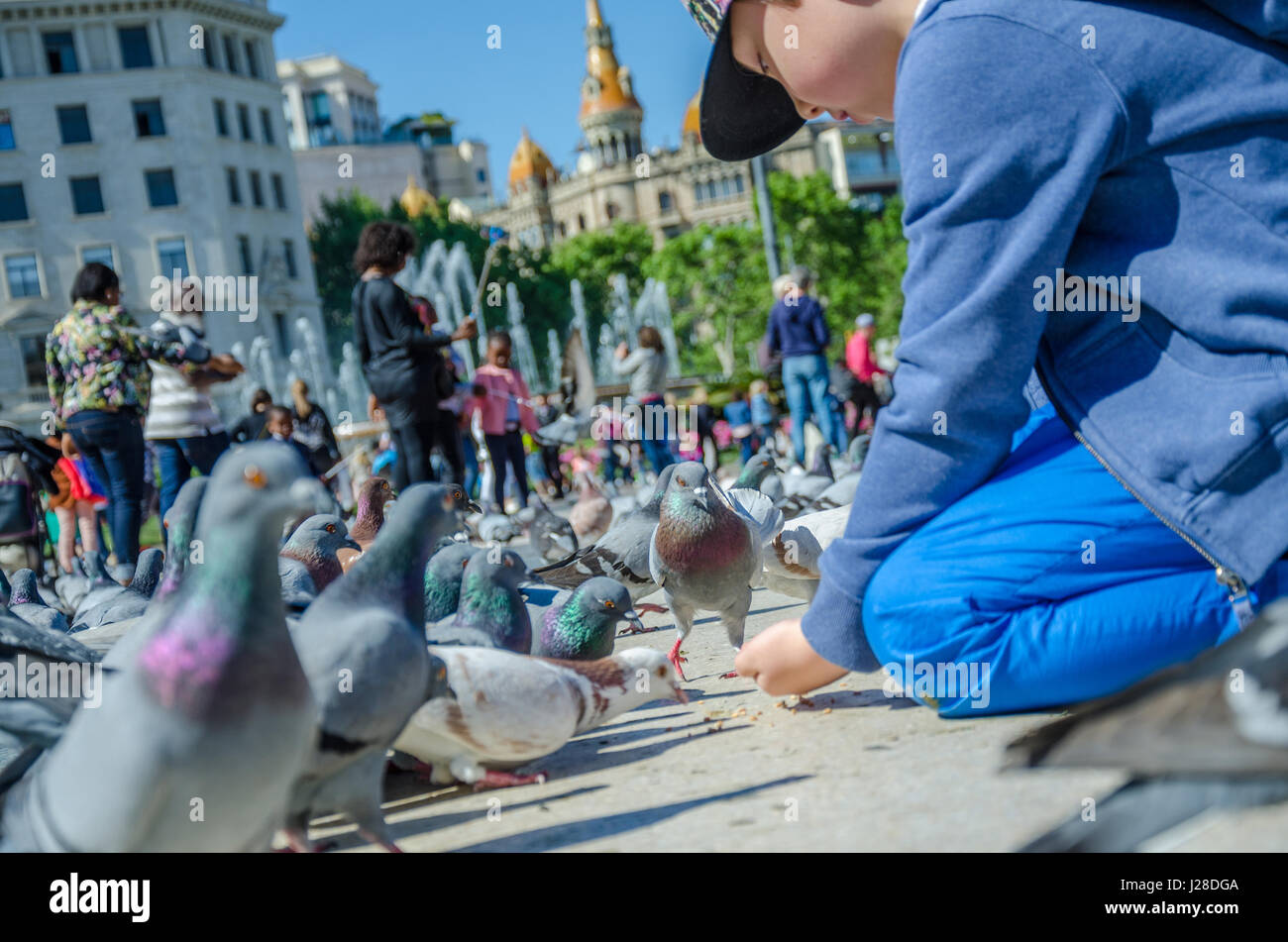 a-young-boy-feeds-pigeons-in-the-plaa-de