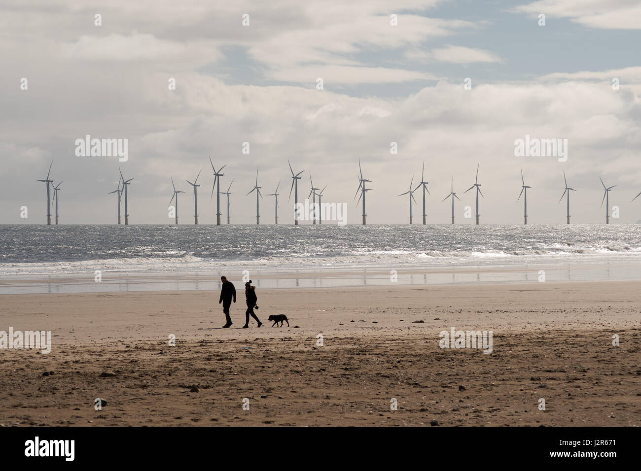 a-couple-walking-a-dog-on-seaton-carew-b