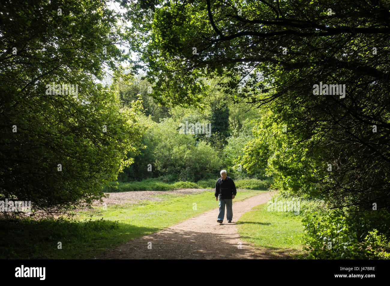 a-walk-in-the-park-J47BRE.jpg