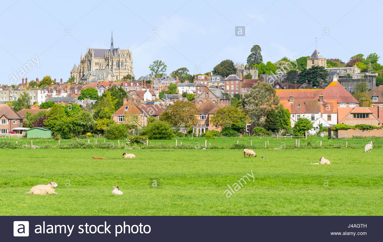 view-across-fields-with-sheep-looking-to