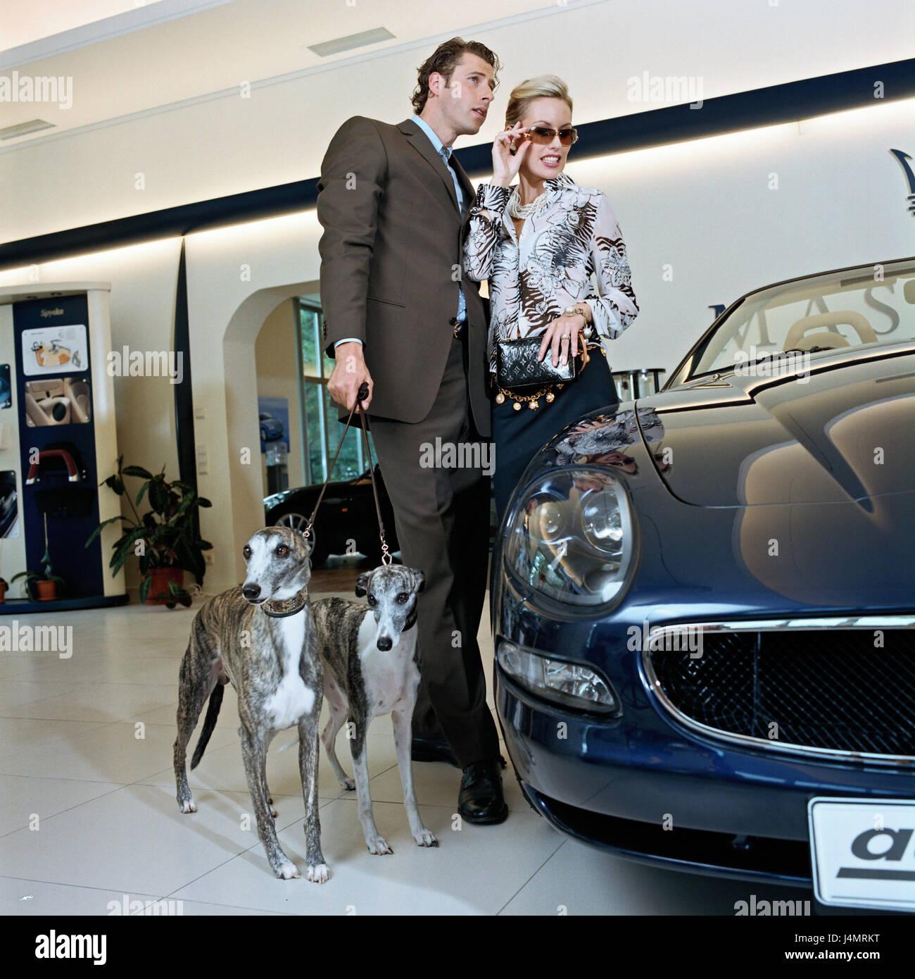 Car Dealer, Showroom, Couple, Elegantly, Car, Look, Dogs