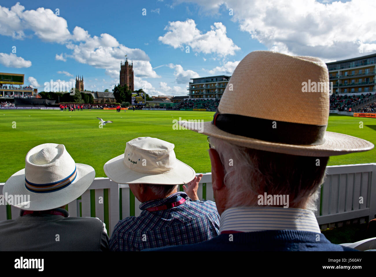 cricket-at-taunton-county-ground-of-some