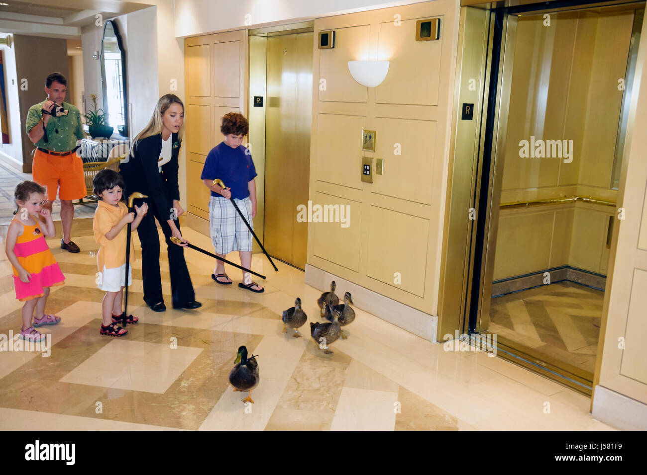 Orlando Florida International Drive The Peabody Orlando hotel Duck March woman man father parent girl boy boys children - Stock Image