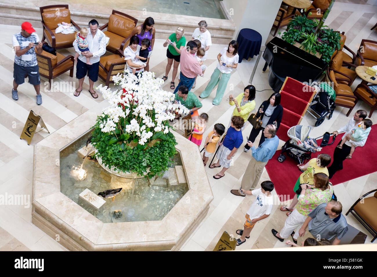 Orlando Florida International Drive The Peabody Orlando hotel Duck March lobby fountain tradition guests children - Stock Image
