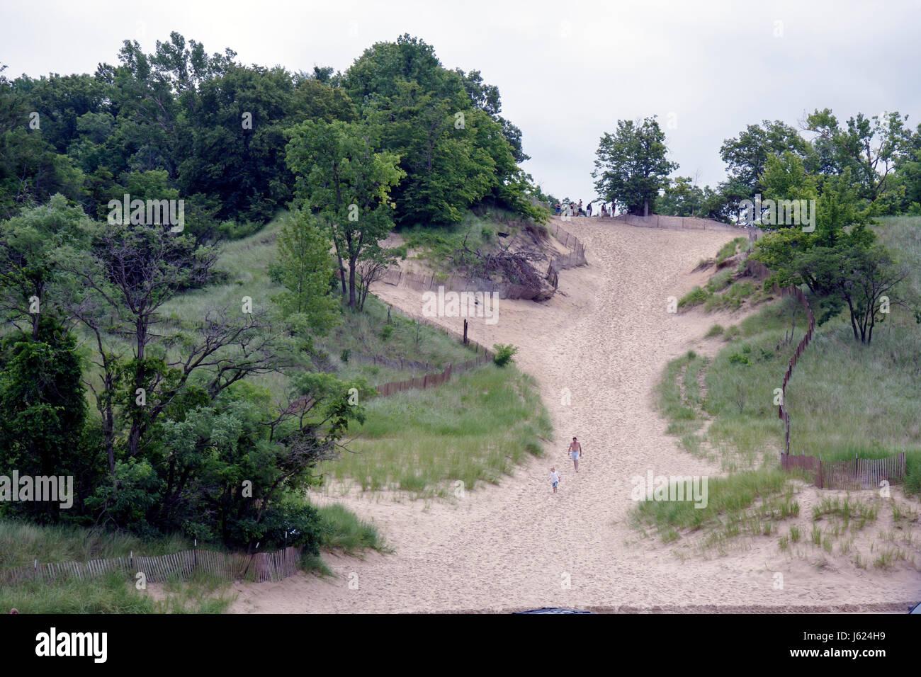 Indiana Chesterton Indiana Dunes State Park Lake Michigan Devil's Slide National Lakeshore Nature Preserve protected - Stock Image