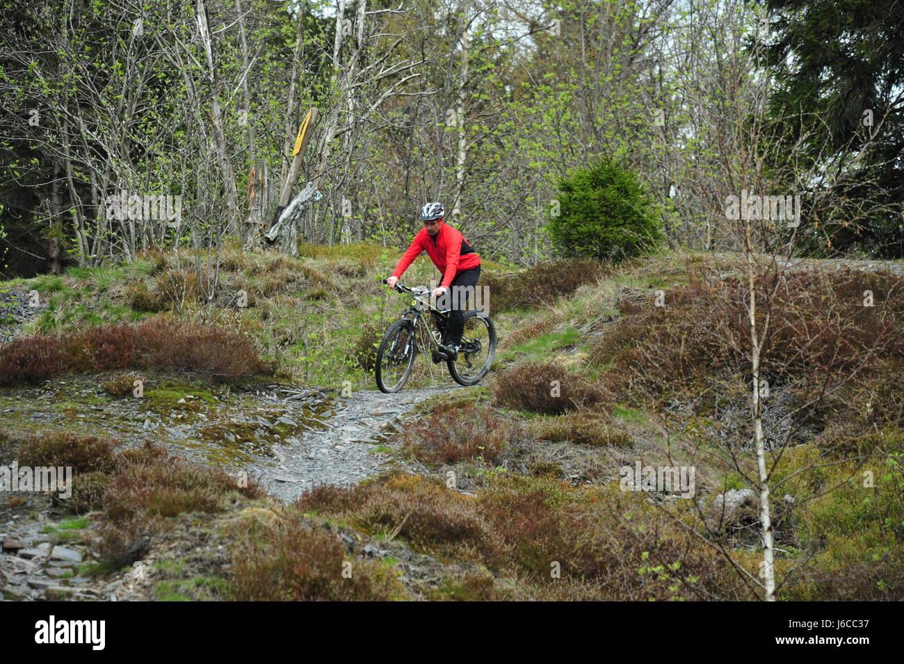 Mountainbiking, Thüringer Wald, Deutschland - Stock-Bilder