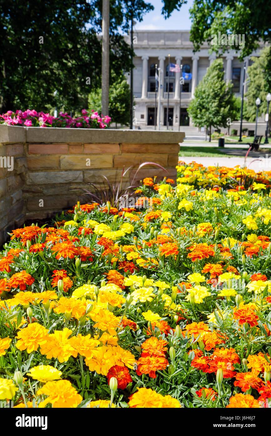 Wisconsin Kenosha Civic Center Park flower bed yellow orange mums garden planter town square - Stock Image