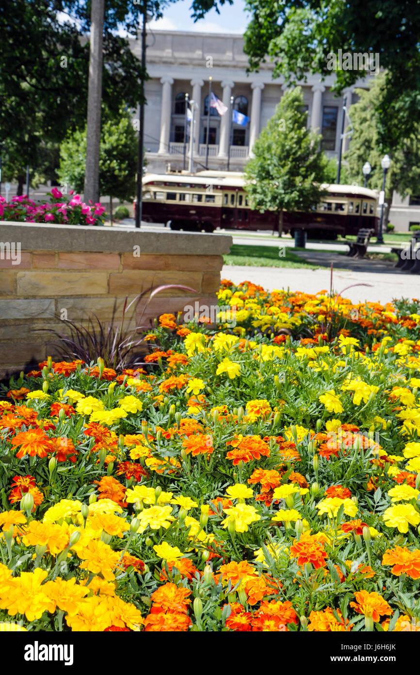 Wisconsin Kenosha Civic Center Park flower bed yellow orange mums garden planter town square trolley - Stock Image