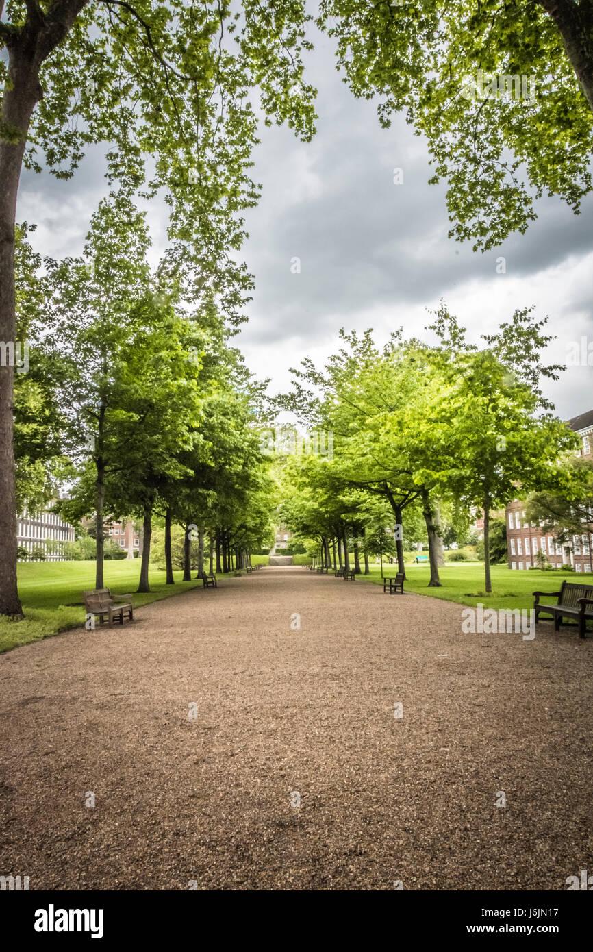 Grays Inn Gardens in London, UK - Stock Image