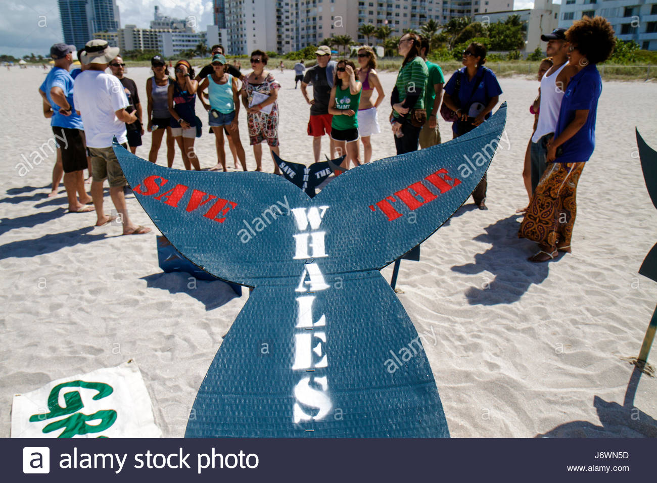 Miami Beach Florida Greenpeace demonstration protest Save the Whales organizer organizing sign group supporters - Stock Image