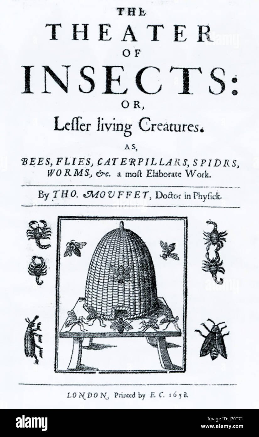 EDWARD WOOTON (1492-1555) English physician and co-author of The Theatre of Insects published in 1634 - Stock-Bilder