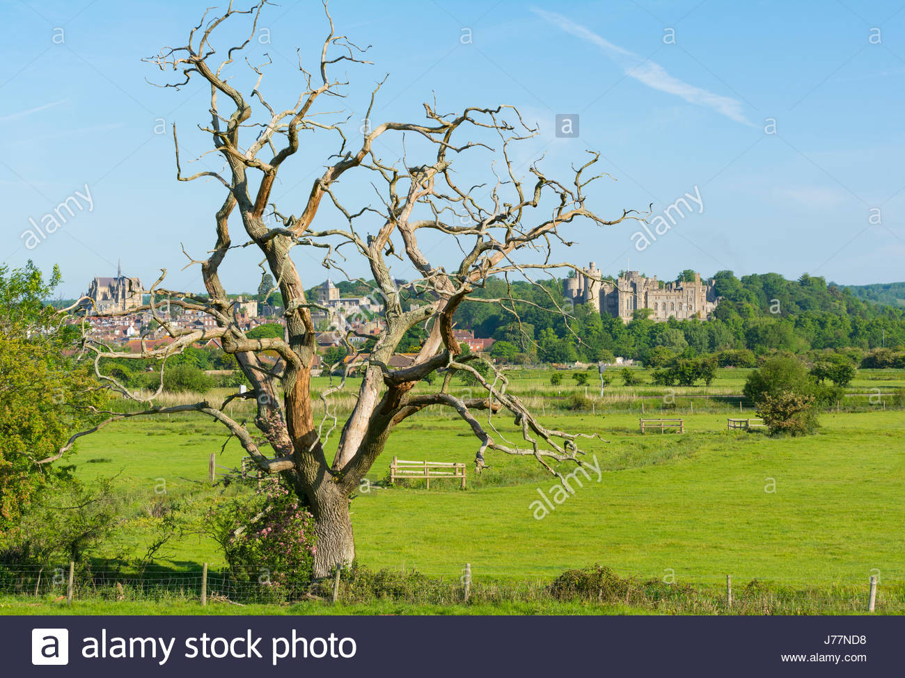 Arundel, West Sussex, England, UK. 24th May 2017. UK Weather. Countryside fields with a view of the medieval market Stock Photo