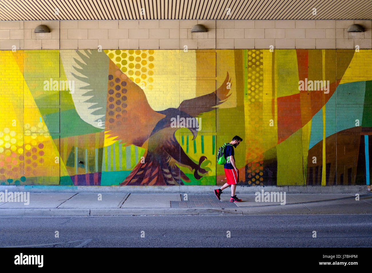 wall-graffiti-art-eagle-about-to-grab-a-male-pedestrian-walking-on-J7BHPM.jpg