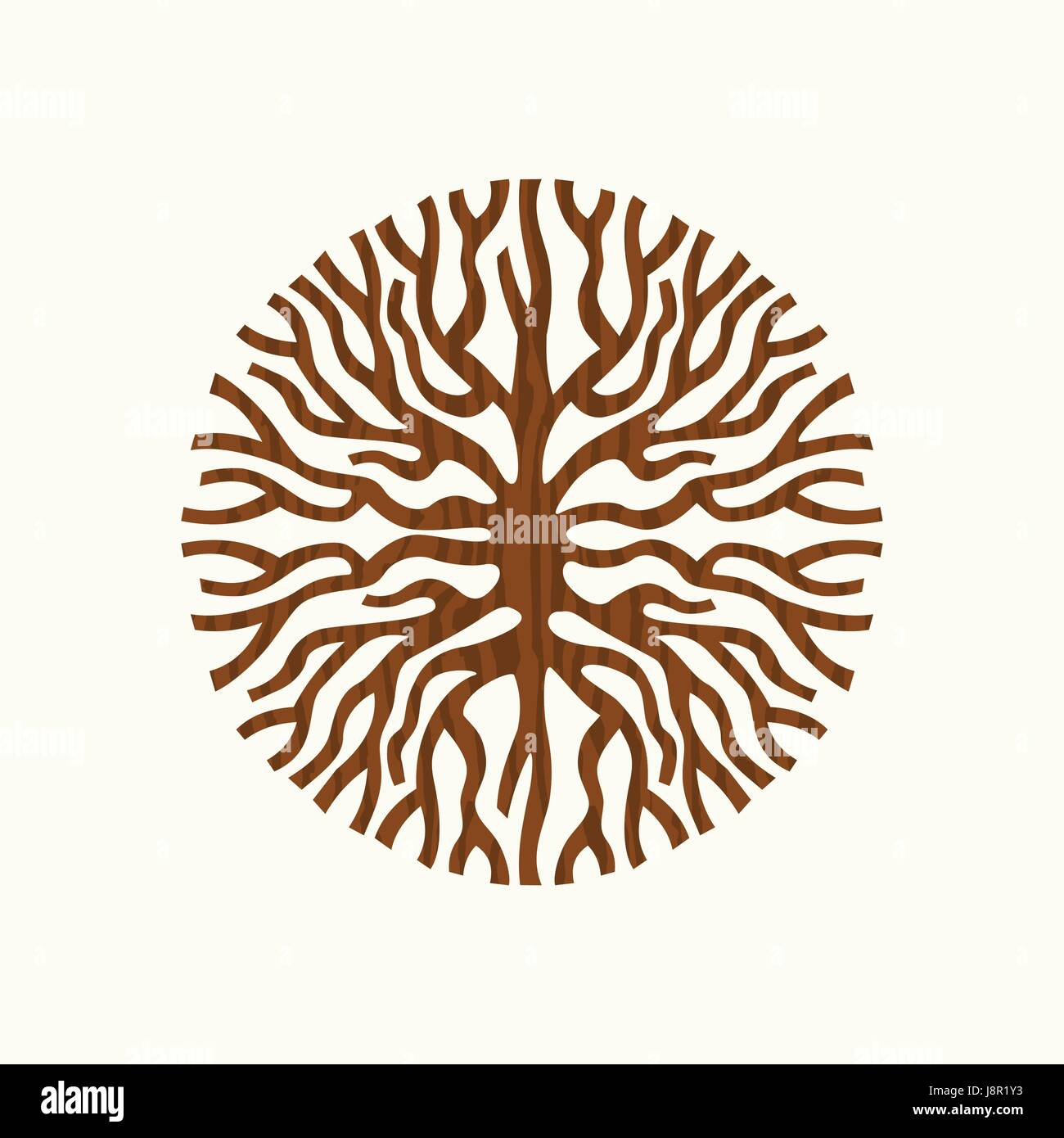 abstract circle shape of tree roots or branches