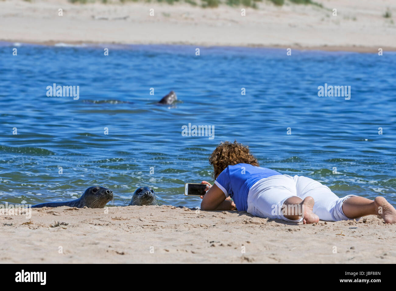 woman-lying-on-her-belly-on-the-beach-and-taking-pictures-with-smartphone-JBF88N.jpg