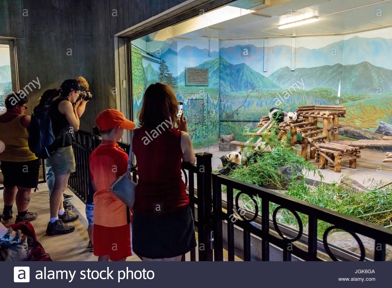 toronto-zoo-park-giant-panda-exhibit-tra