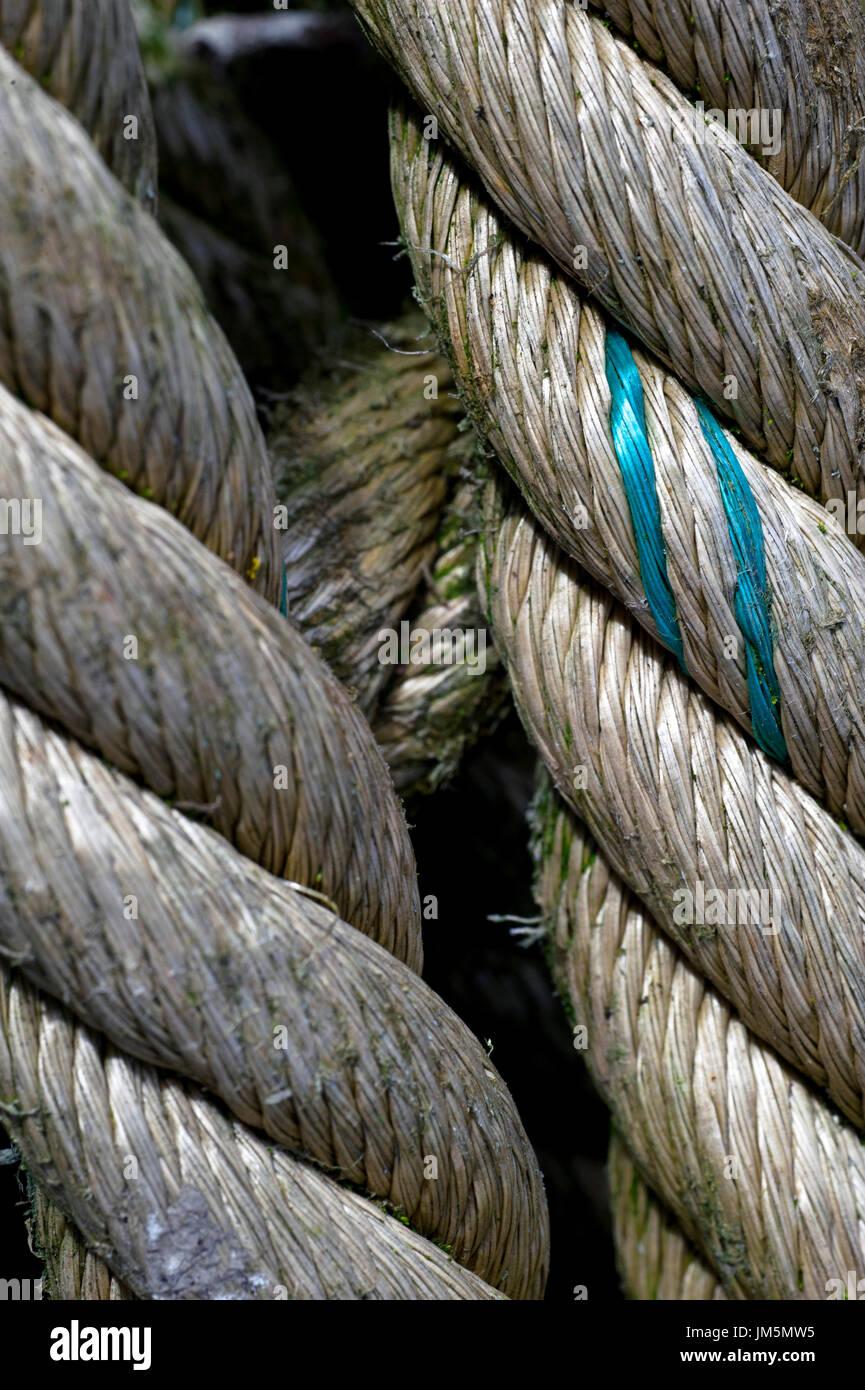 weathered rope - Stock Image