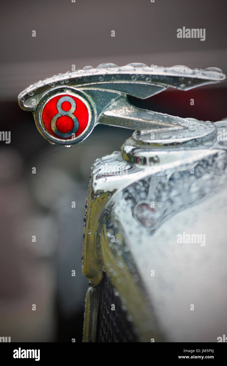 vintage morris eight car emblem - Stock Image