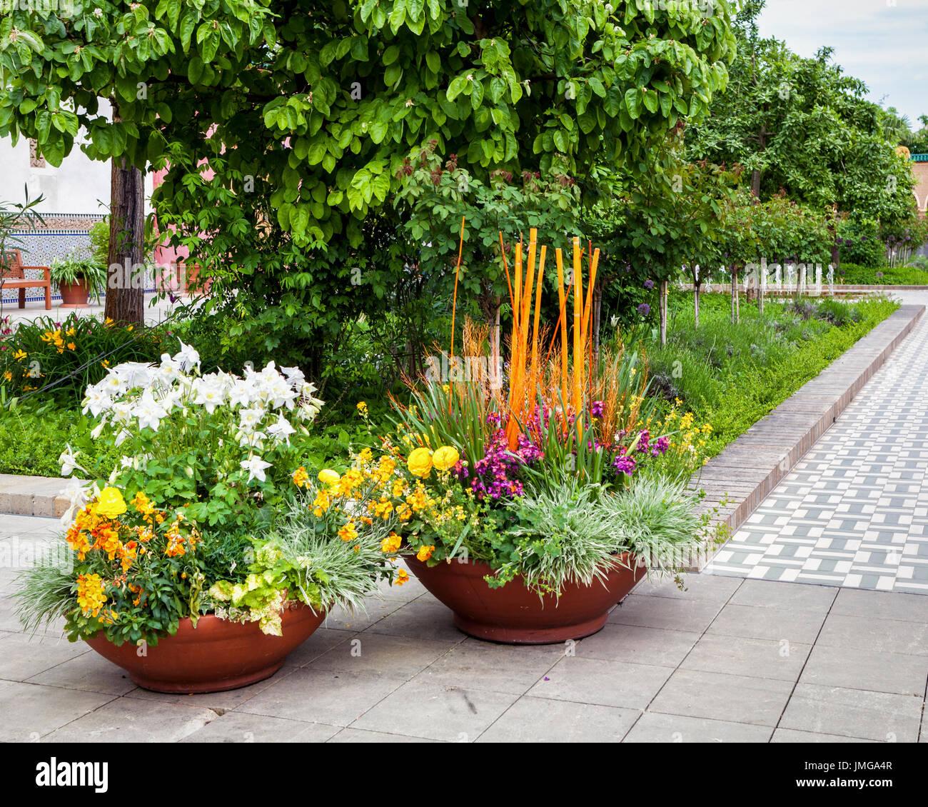 potplants stock photos potplants stock images alamy. Black Bedroom Furniture Sets. Home Design Ideas