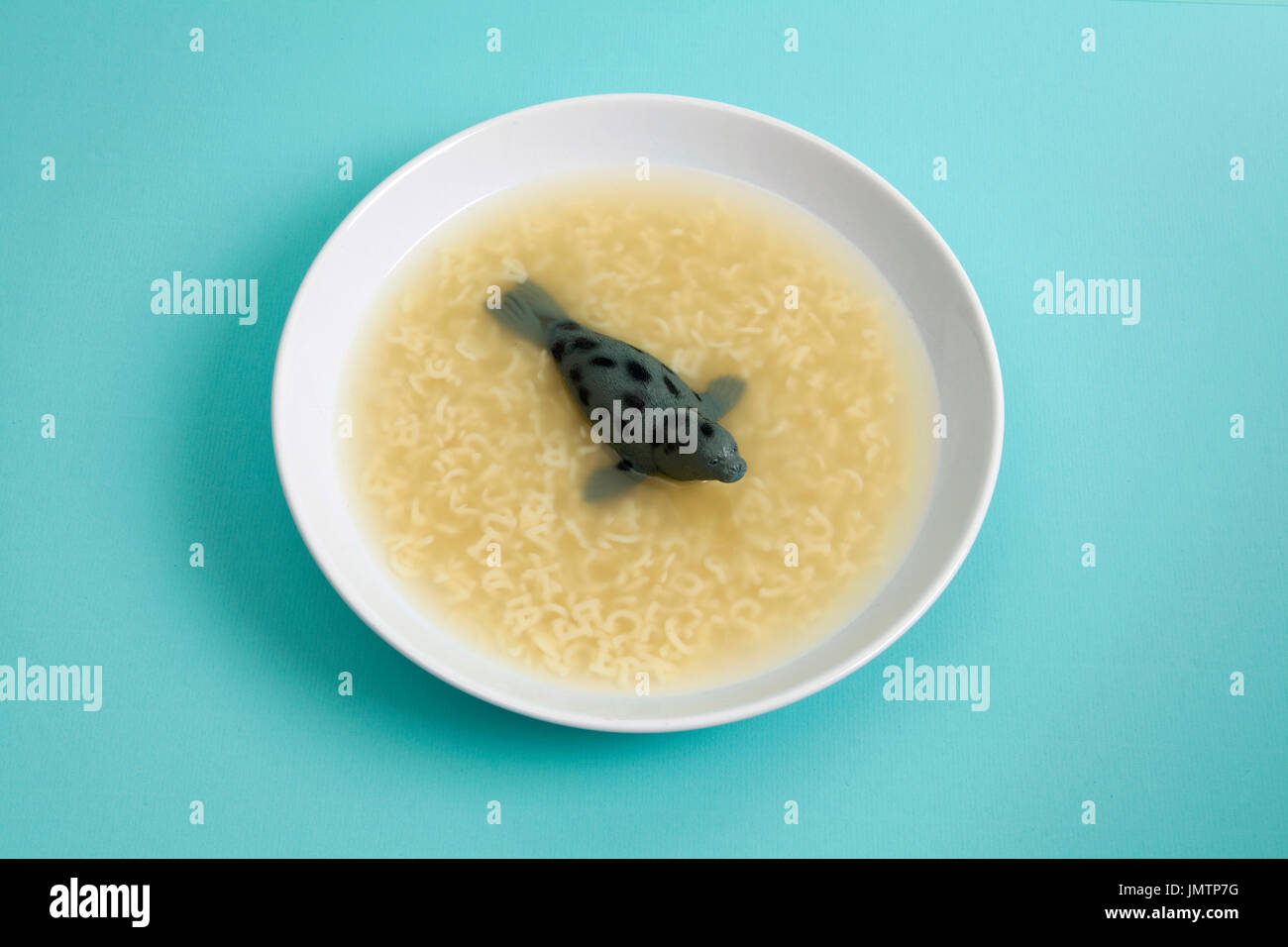 a sea lion animal swiming in a broth with Alphabet pasta. Quirky, funny and minimal color still life photography - Stock Image