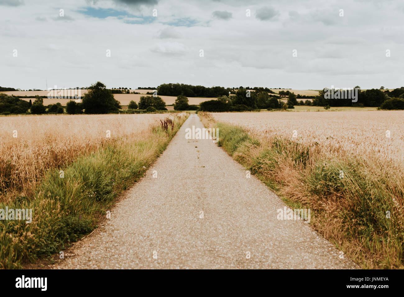 Landsape in England, Suffolk region - Stock Image