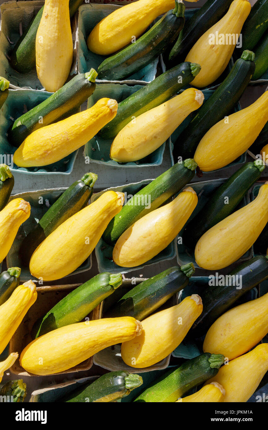 Monawk Valley, New York state -Summer squash and zucchini for sale at a farmers market in upstate New York - Stock Image