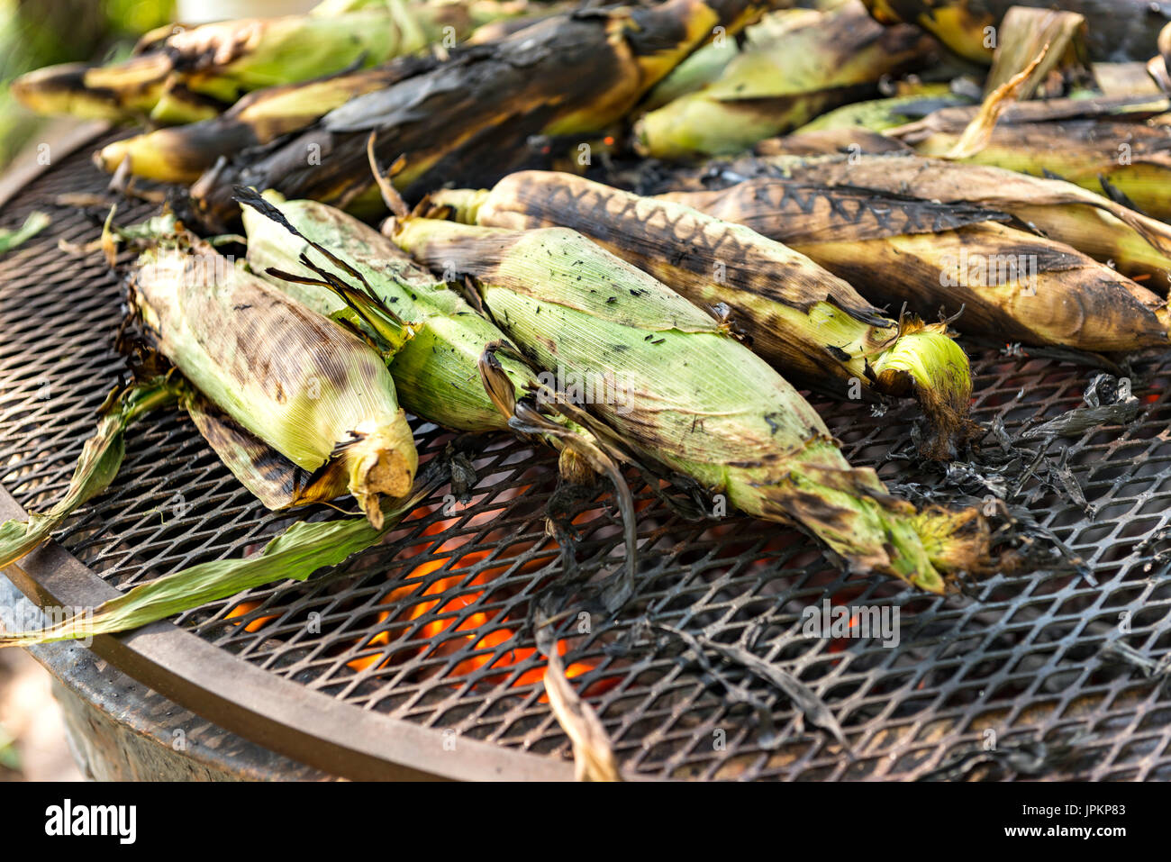 sweet corn grilled on open fire - Stock Image