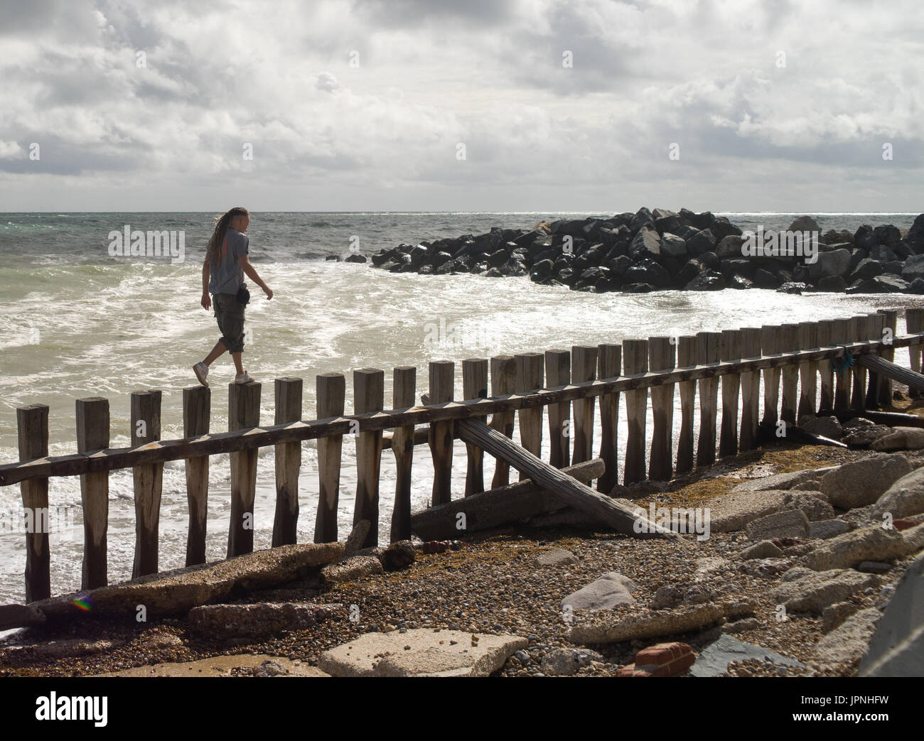 Man walks along a weathered drift fencing at a beach in Hove, East Sussex. - Stock Image