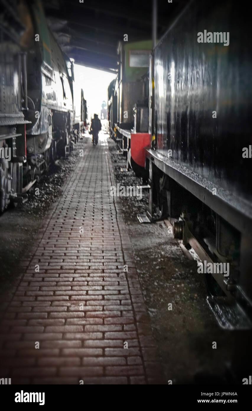 railway shed - Stock Image
