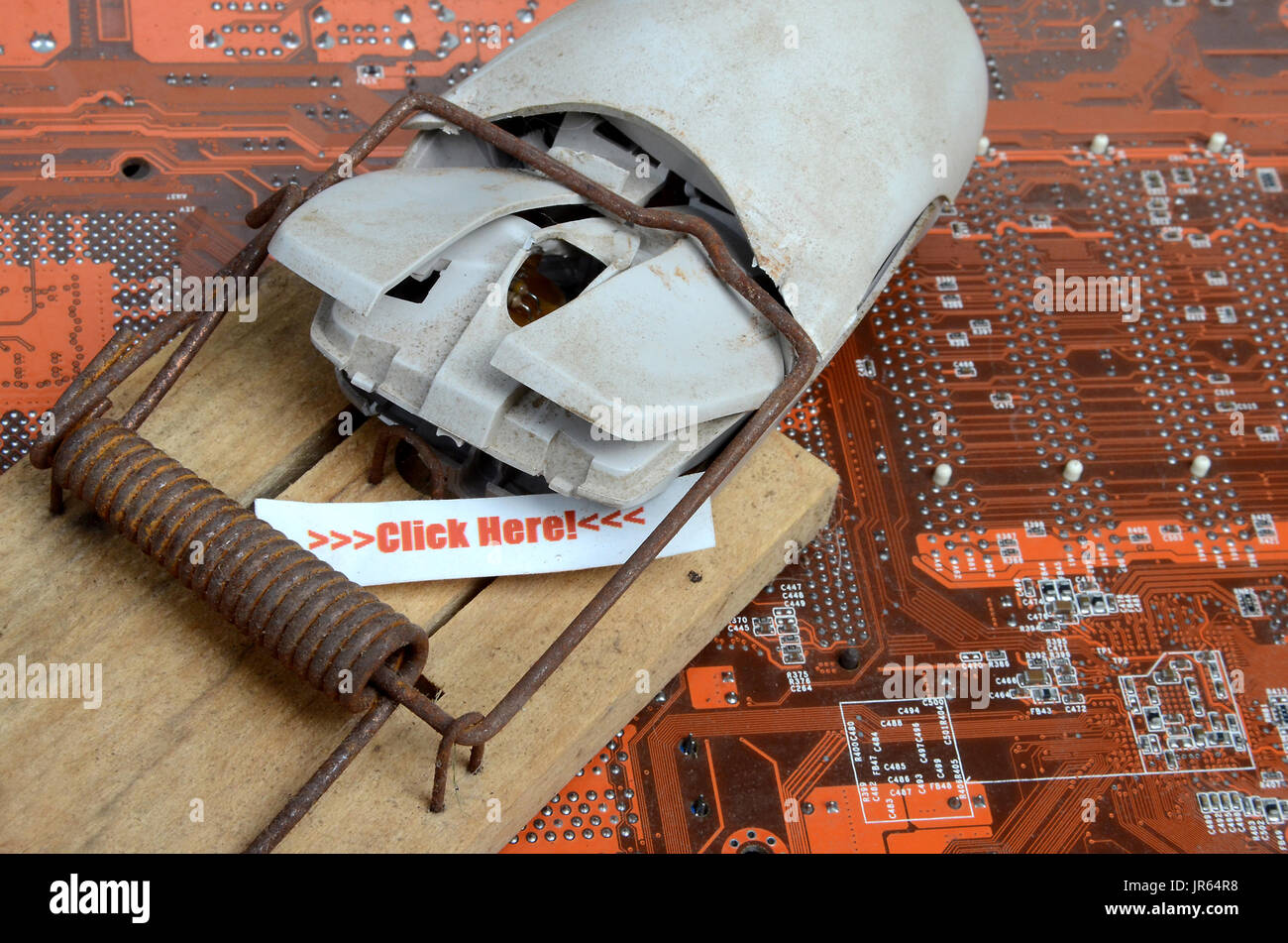 Computer mouse caught in trap. - Stock Image
