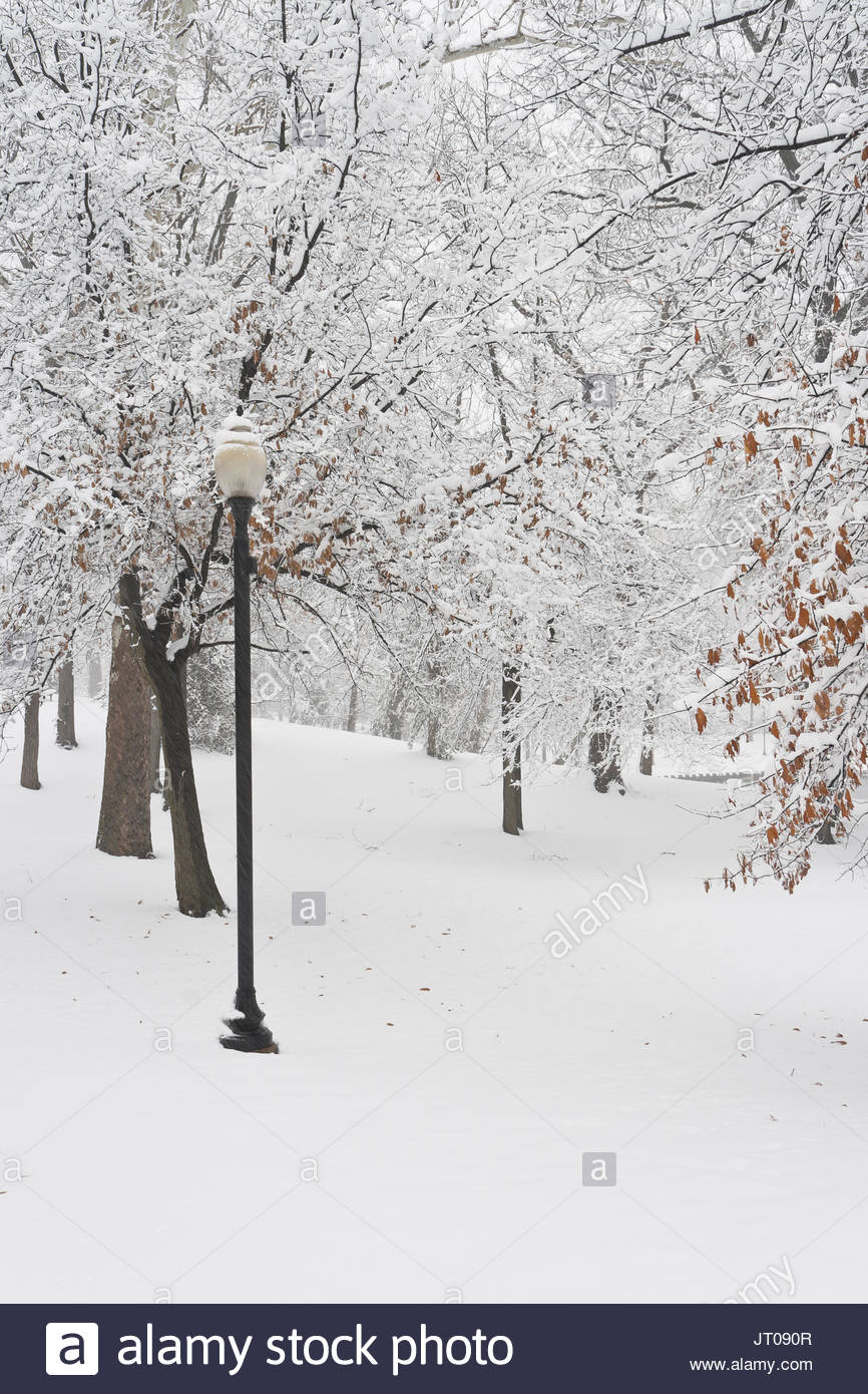Palm Sunday snowfall at January-Wabash Park with a street light beside a walking path. - Stock Image