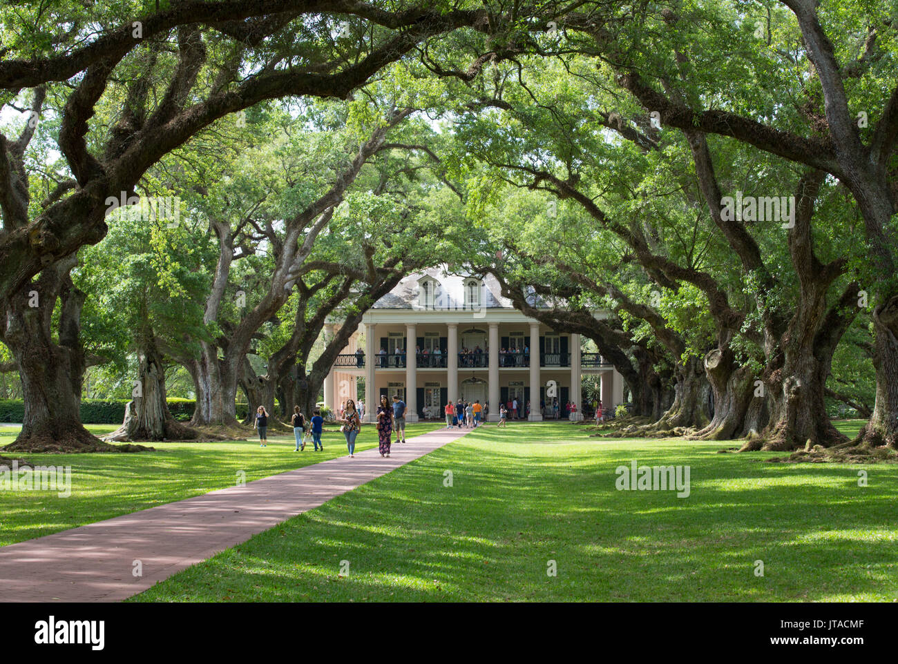 The 300 Year Old Oak Trees, Oak Alley Plantation, built 1830s, near St. James, Louisiana, USA, North America - Stock Image