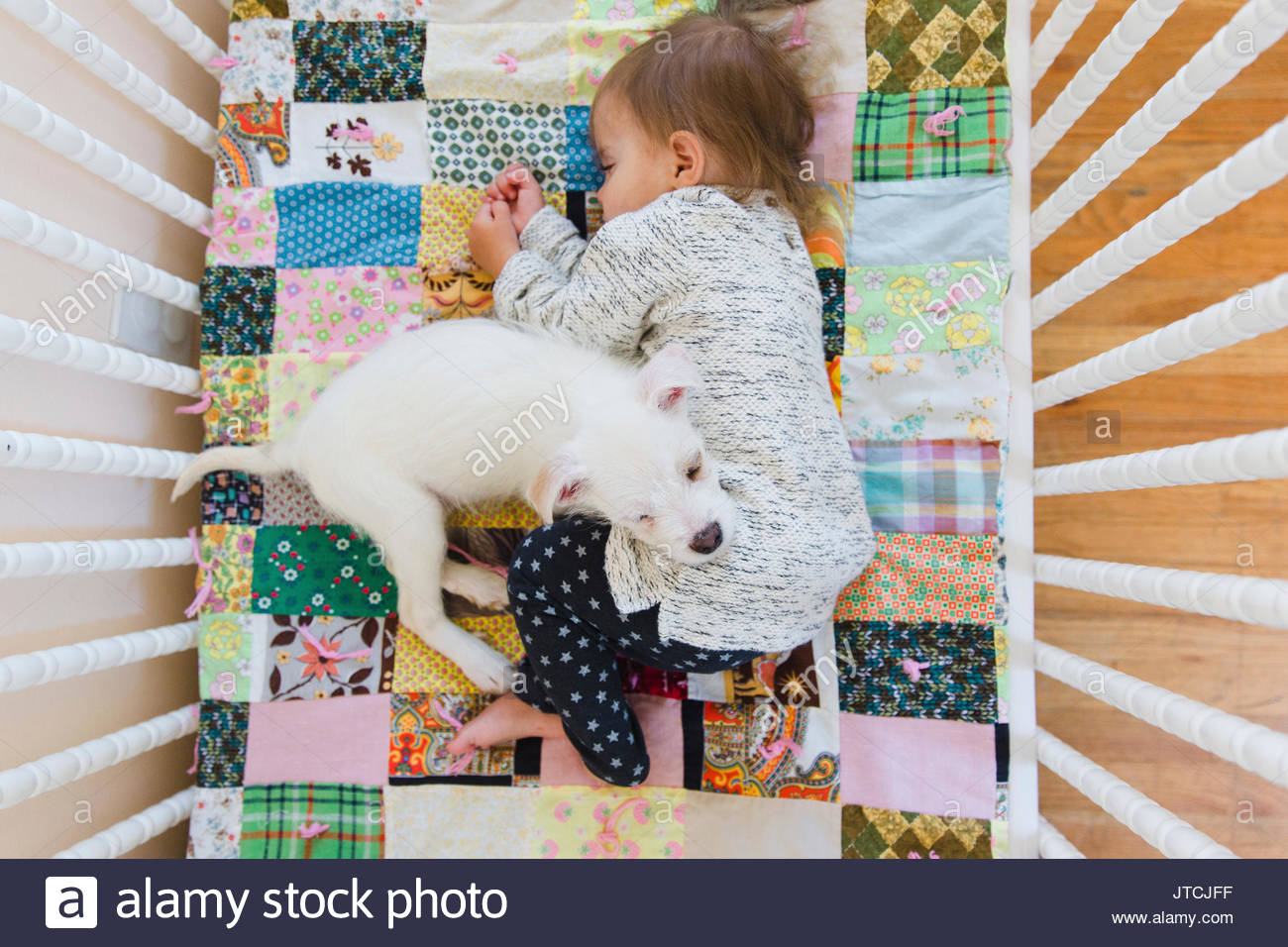 A puppy and a baby sleeping on a patchwork quilt in a cot. - Stock Image