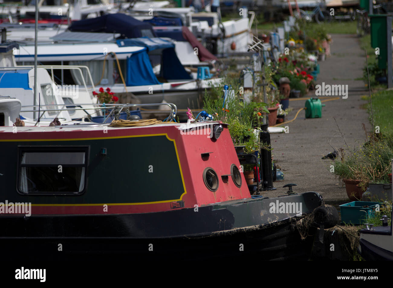 Lee Valley Marina, Springfield Park, Stamford Hill E5 London houseboats moored close together - Stock Image