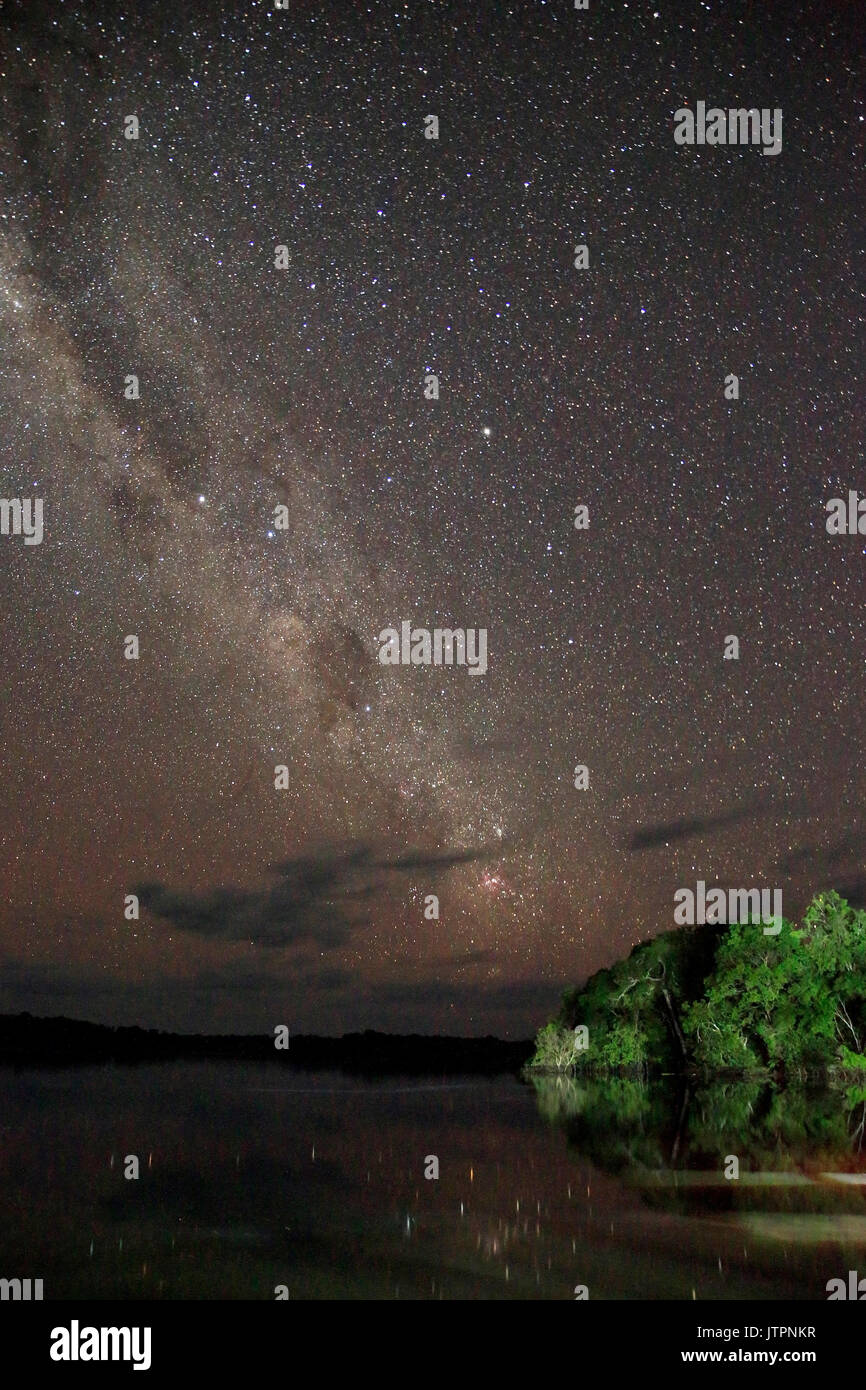 Long-exposure Night Sky and the Milky Way, over the Amazon Rainforest. Brazil - Stock Image