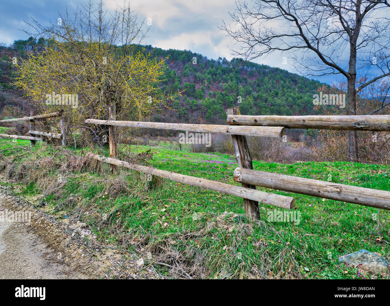 Old wooden fence, trees, green grass, and blue cloudy sky on green meadow, Mudurnu, Turkey - Stock Image