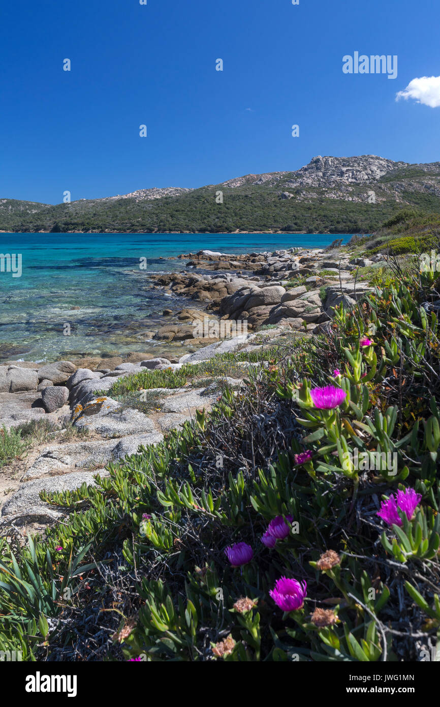 Coastline of Baja Sardinia near Palau on the northeast coast of the Island of Sardinia - Italy - Stock Image