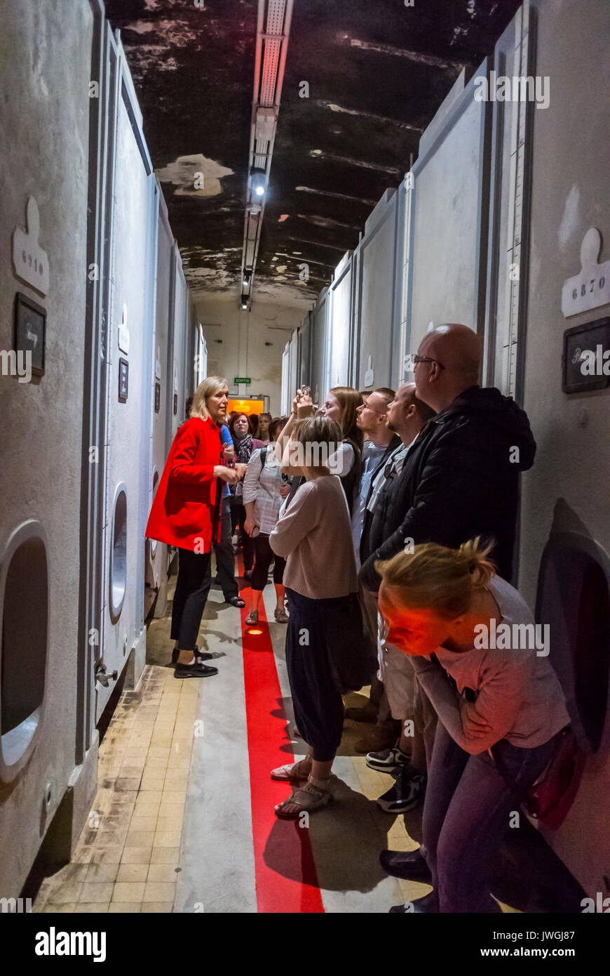 Reims, France, Group of Tourists Visiting Mumm Champagne Cave, Listening to French Tour Guide, inside - Stock Image