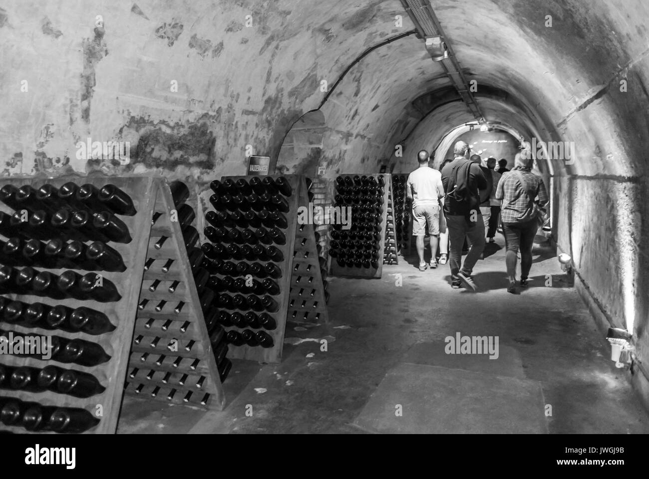 Reims, France, Tourists Visiting Mumm Champagne Cave - Stock Image