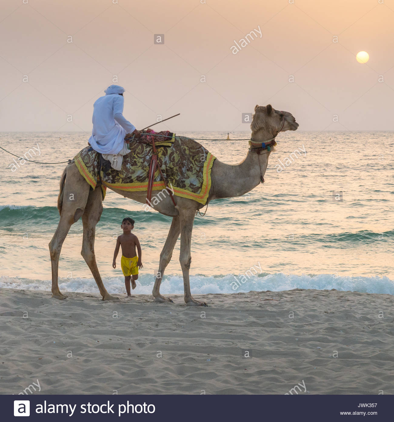 A boy and a camel in Jumeirah Beach Residence, Dubai, United Arab Emirates (UAE) - Stock Image