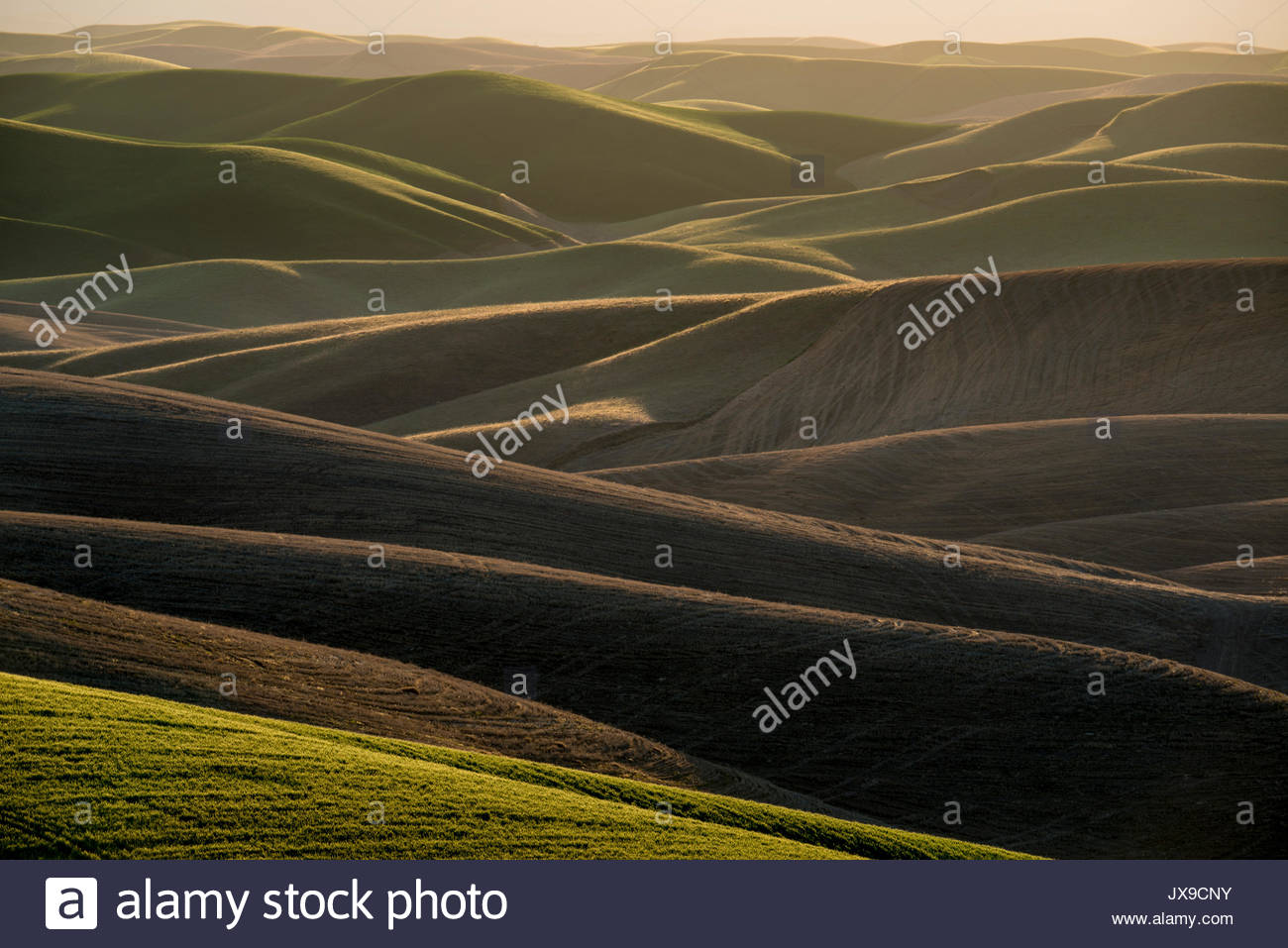 Channeled scablands stock photos channeled scablands for What is rich soil called
