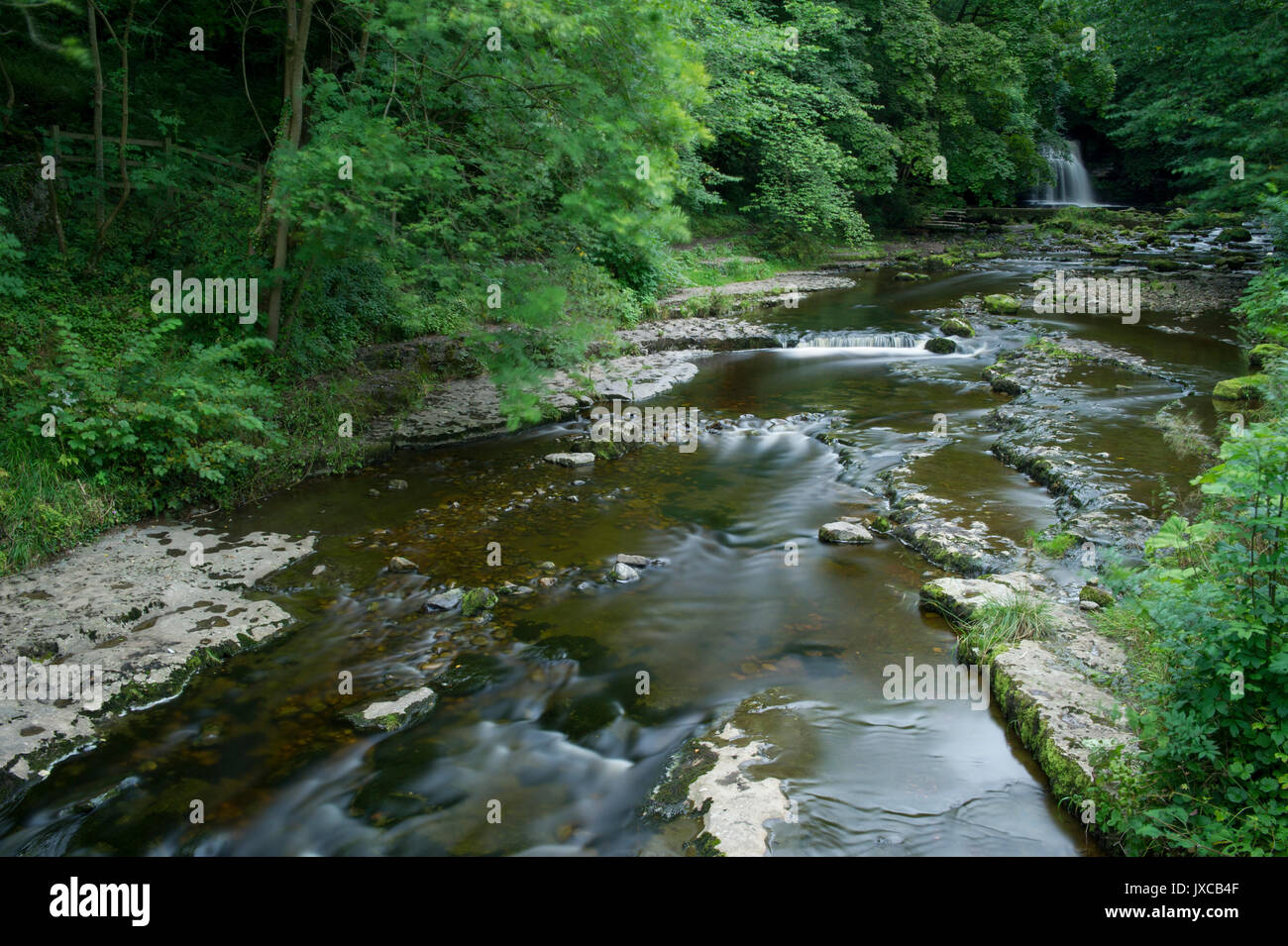 Cauldron Falls Waterfall in the village of West Burton near Hawes in the Yorkshire Dales National Park, North Yorkshire, - Stock Image