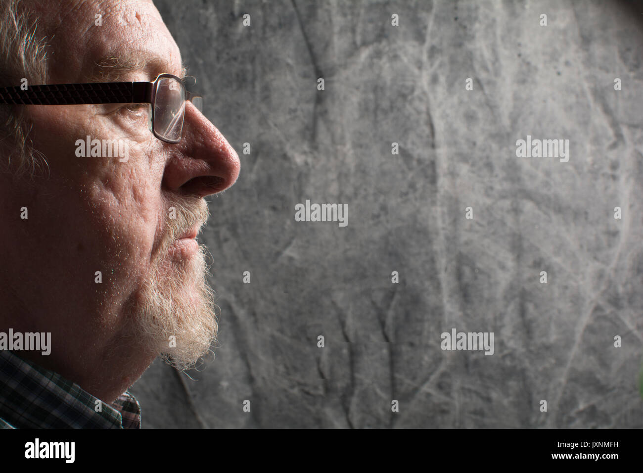 profile of an older man with a beard and spectacles, in vacant or pensive mood - Stock Image